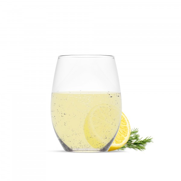 welltec Zitrone Rosmarin Konzentrat